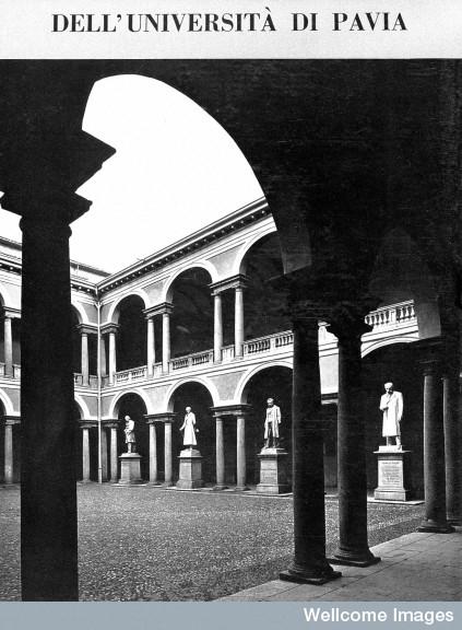 La nascita delle Università e la scolastica