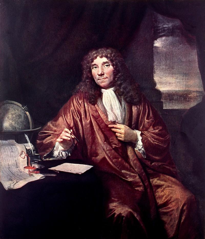 van Leeuwenhoek e l'anatomia microscopica
