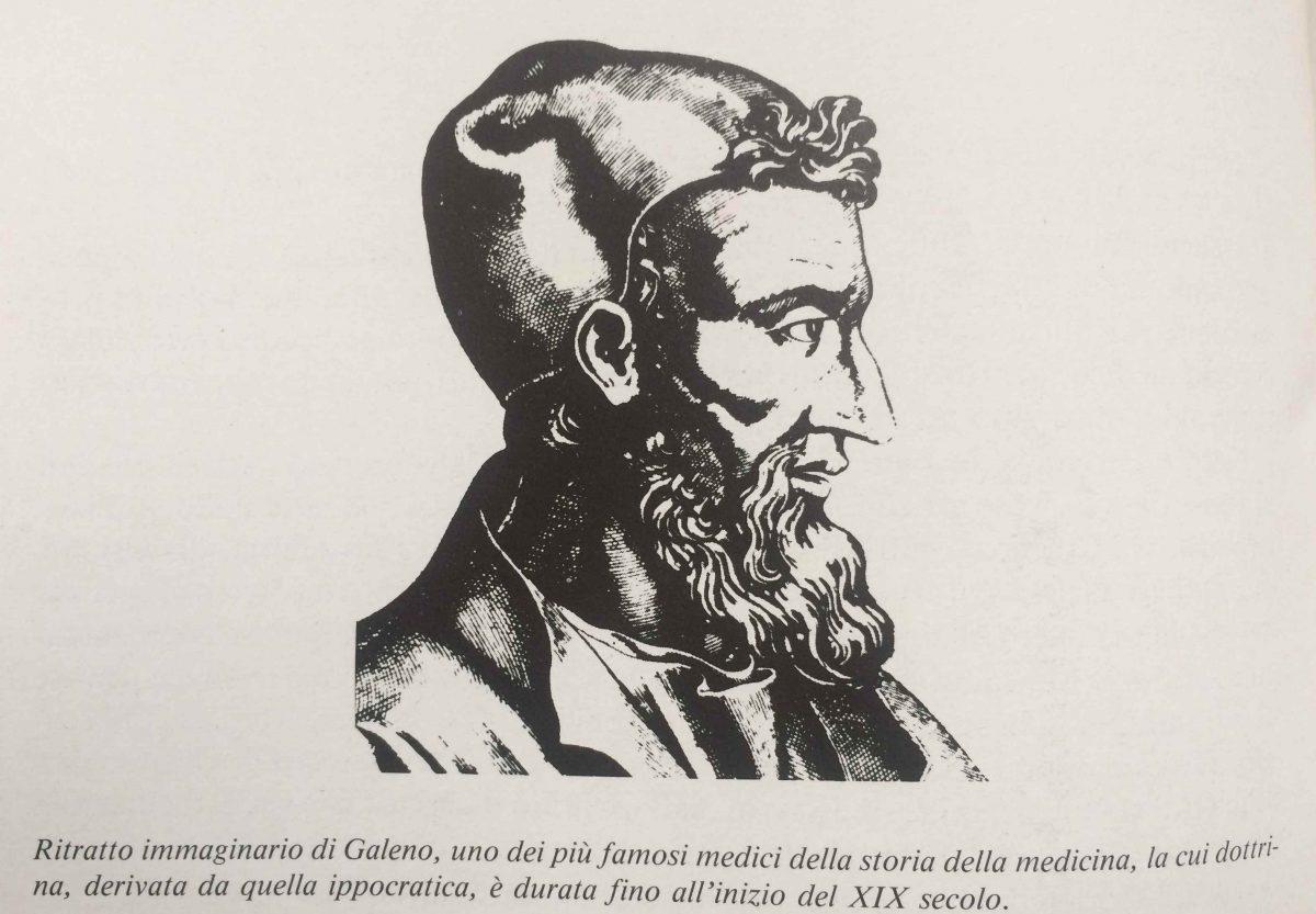 La 'rete mirabile' di Galeno