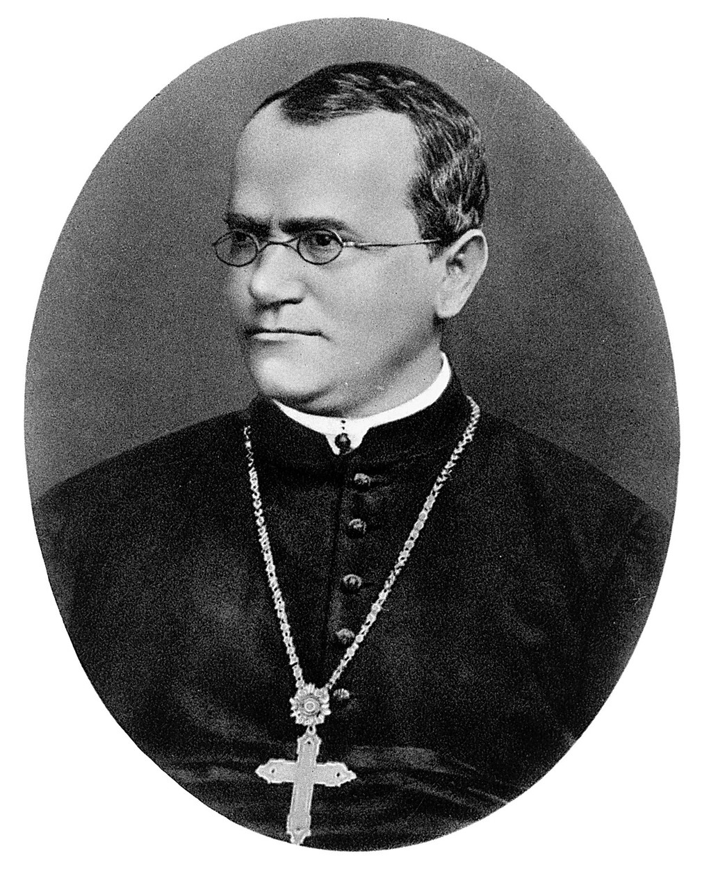 Gregor Mendel e la genetica