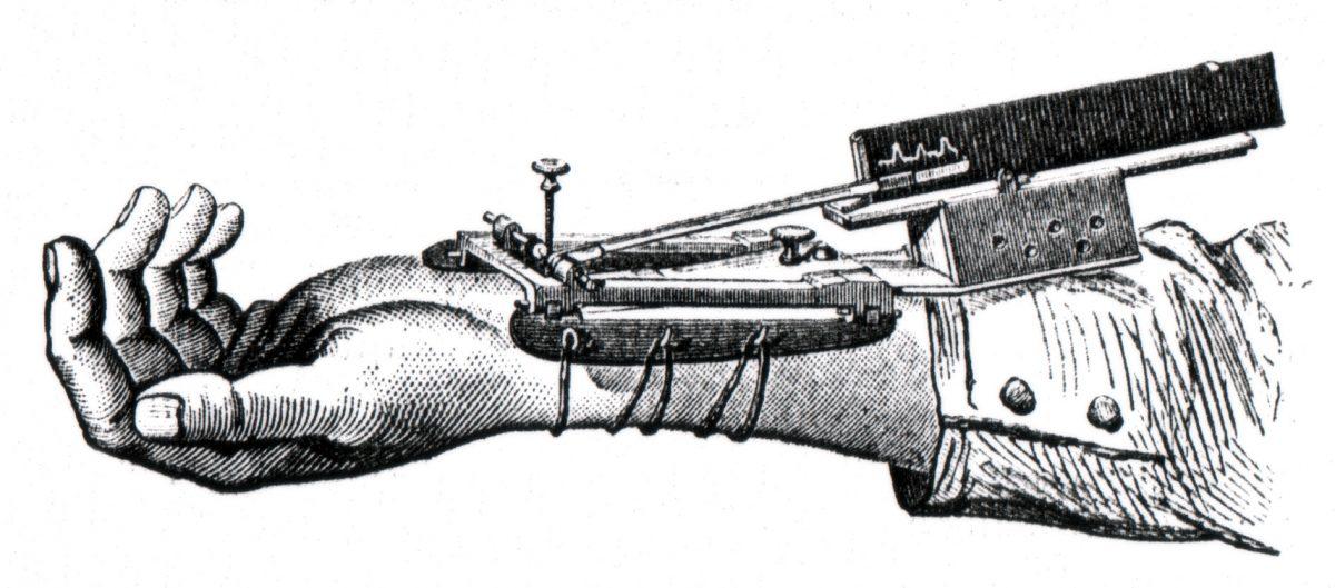 """La """"misura"""" dell'organismo con i nuovi strumenti"""